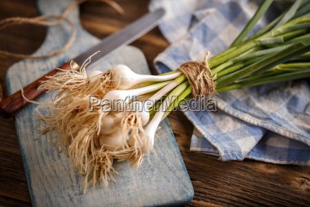 fresh green garlic