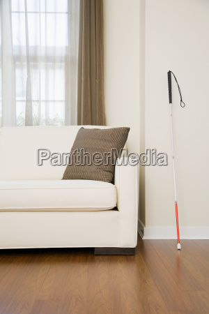 walking stick in a living room