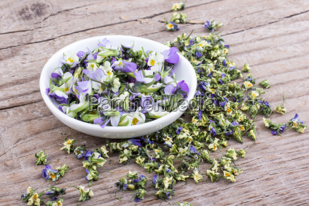 fresh and dried flowers from field