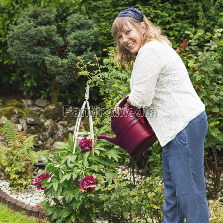 gardening nice woman pours peonies in