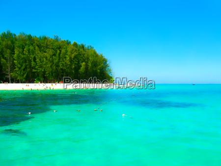 bamboo island is one other island