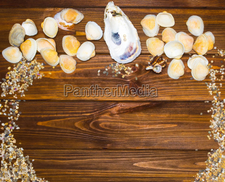 sand and shells on the wooden