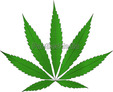 cannabis hemp medicinal legal medicine