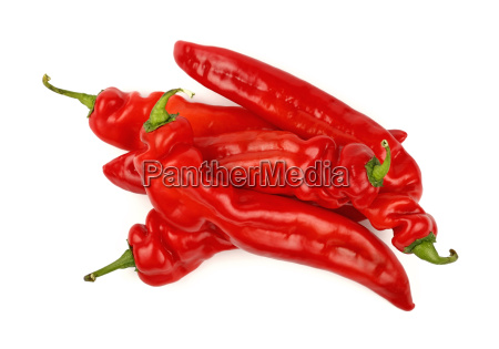 red paprika peppers close up isolated