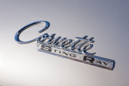 detail of a corvette sting ray
