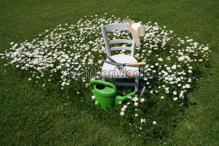 garden lawn flowers