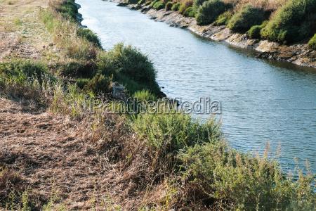 riverbank of ribeira de quarteira in