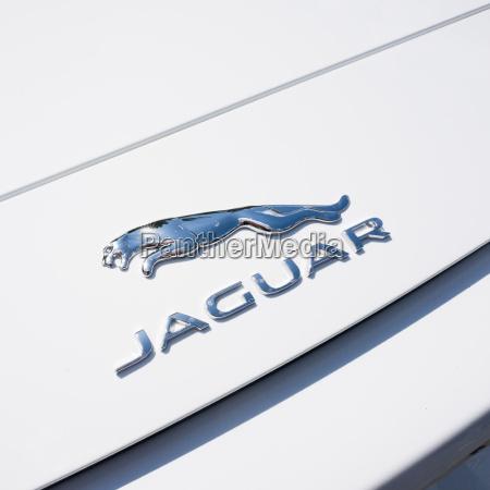 jaguar logo on a car