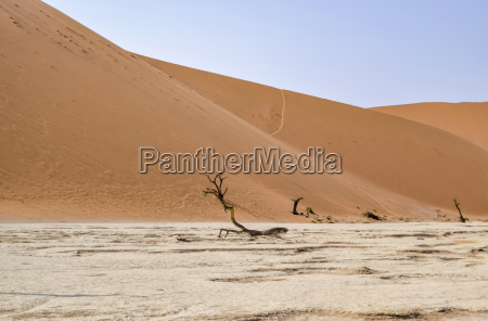 namib desert in namibia