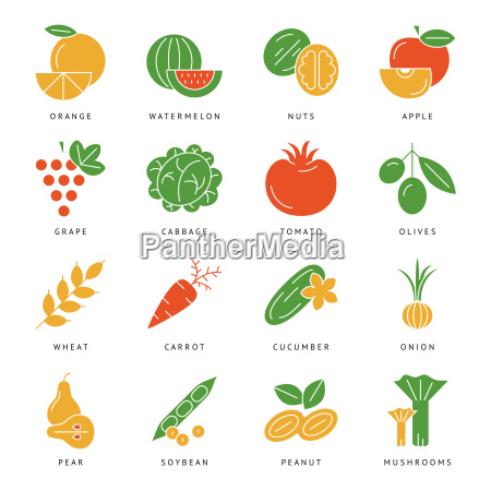 digital vector green vegetable icons set