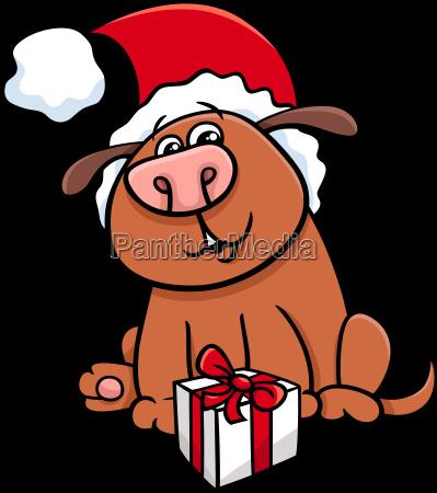 dog with gift on christmas