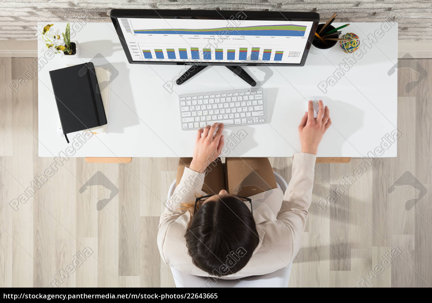 businesswoman, analyzing, graph, using, computer - 22643665