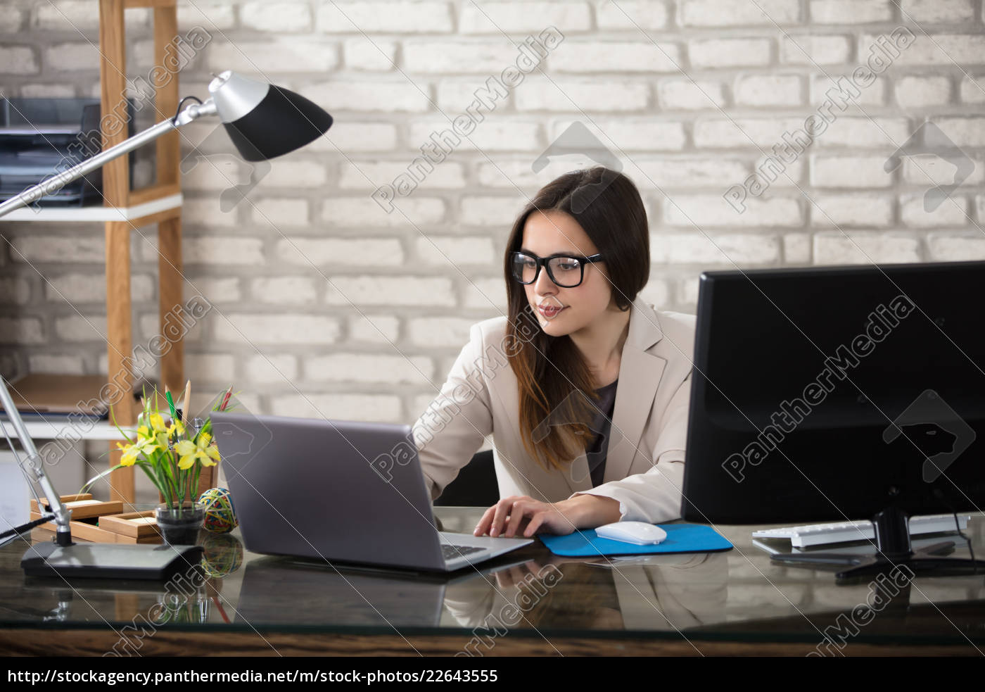 smiling, businesswoman, using, computer - 22643555