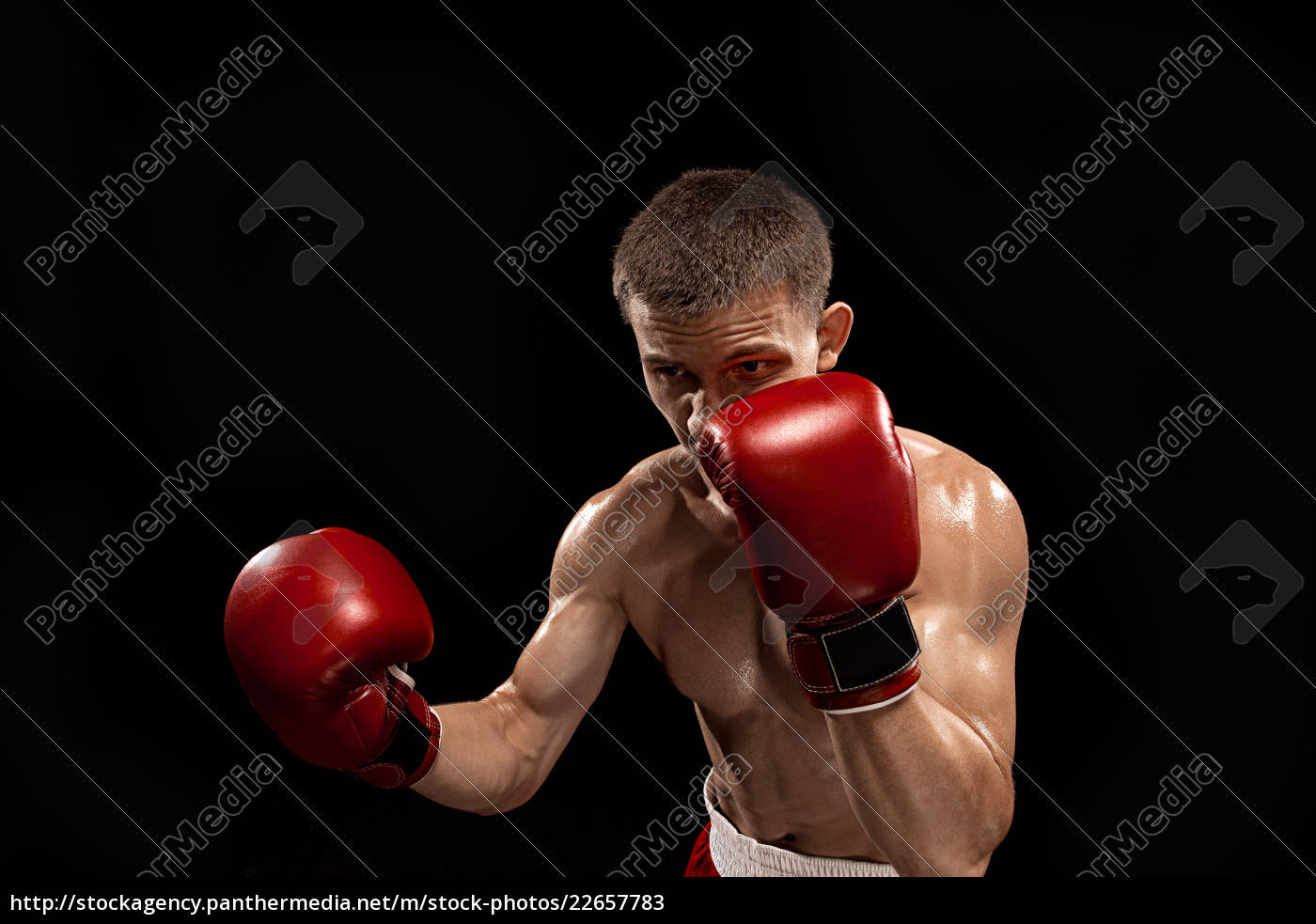 male, boxer, boxing, with, dramatic, edgy - 22657783
