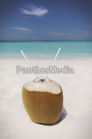 coconut with two straws on sunny