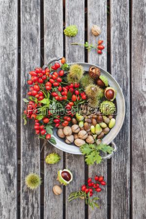 tin plate of autumn harvest on