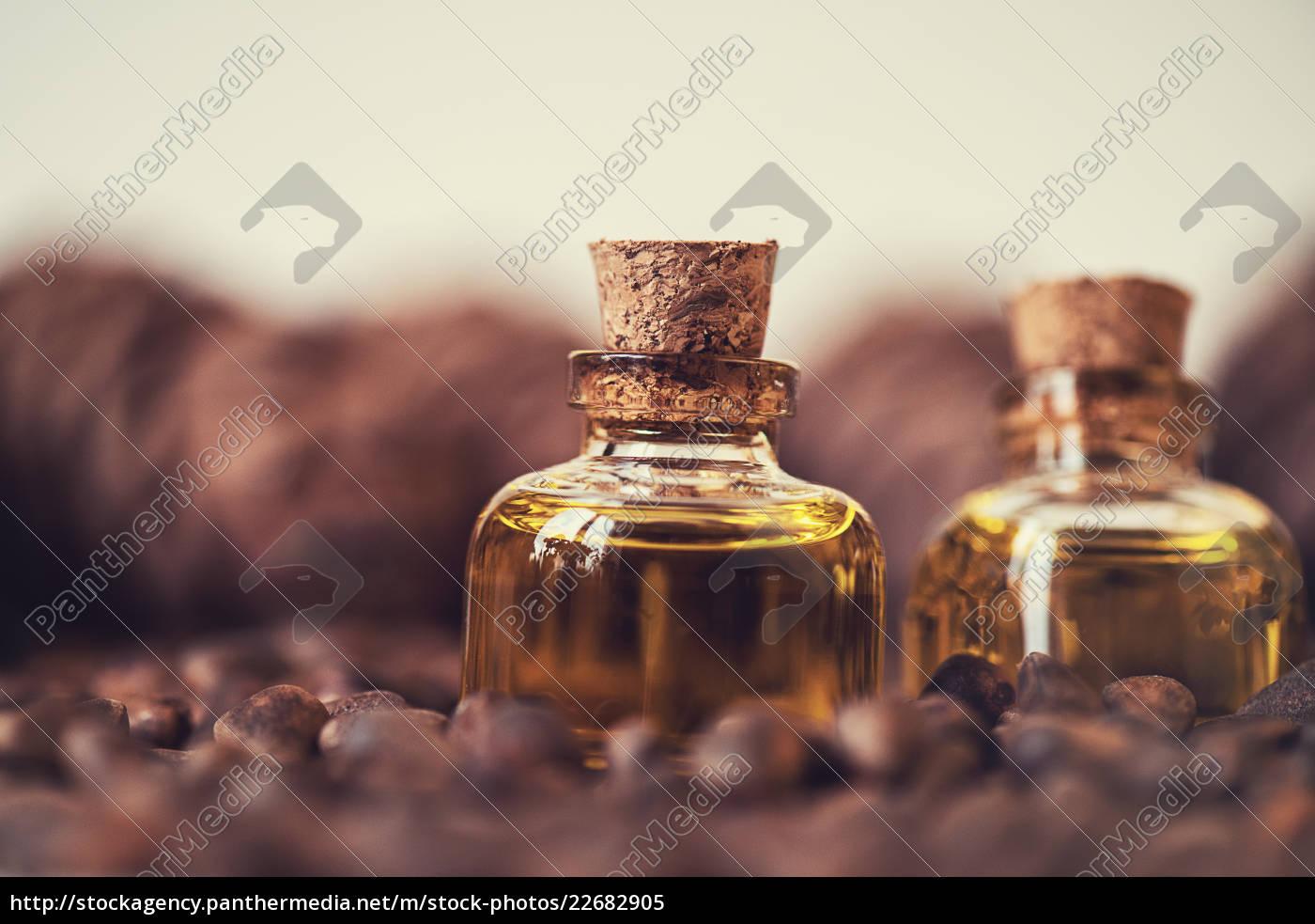 oil, of, cedar, nuts - 22682905