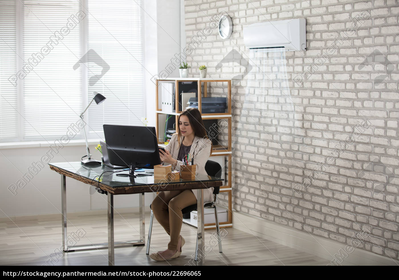 businesswoman, working, in, office, with, air - 22696065