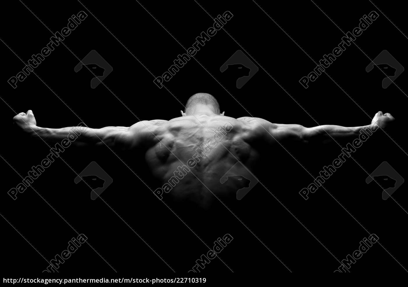 perfect, body - 22710319