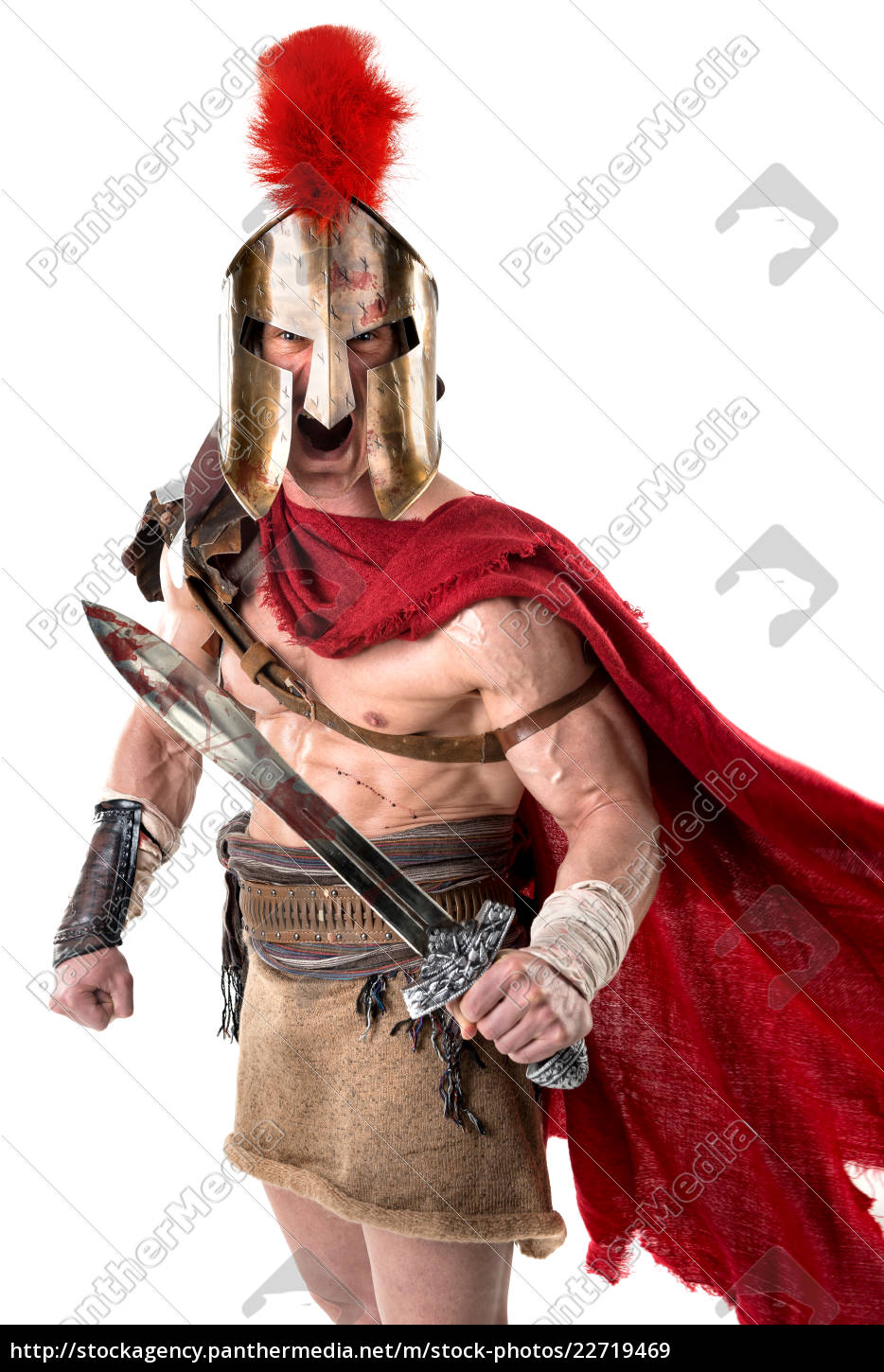 ancient, soldier, or, gladiator - 22719469