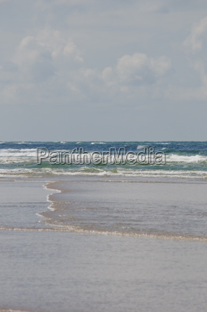 sandy beach of the north sea