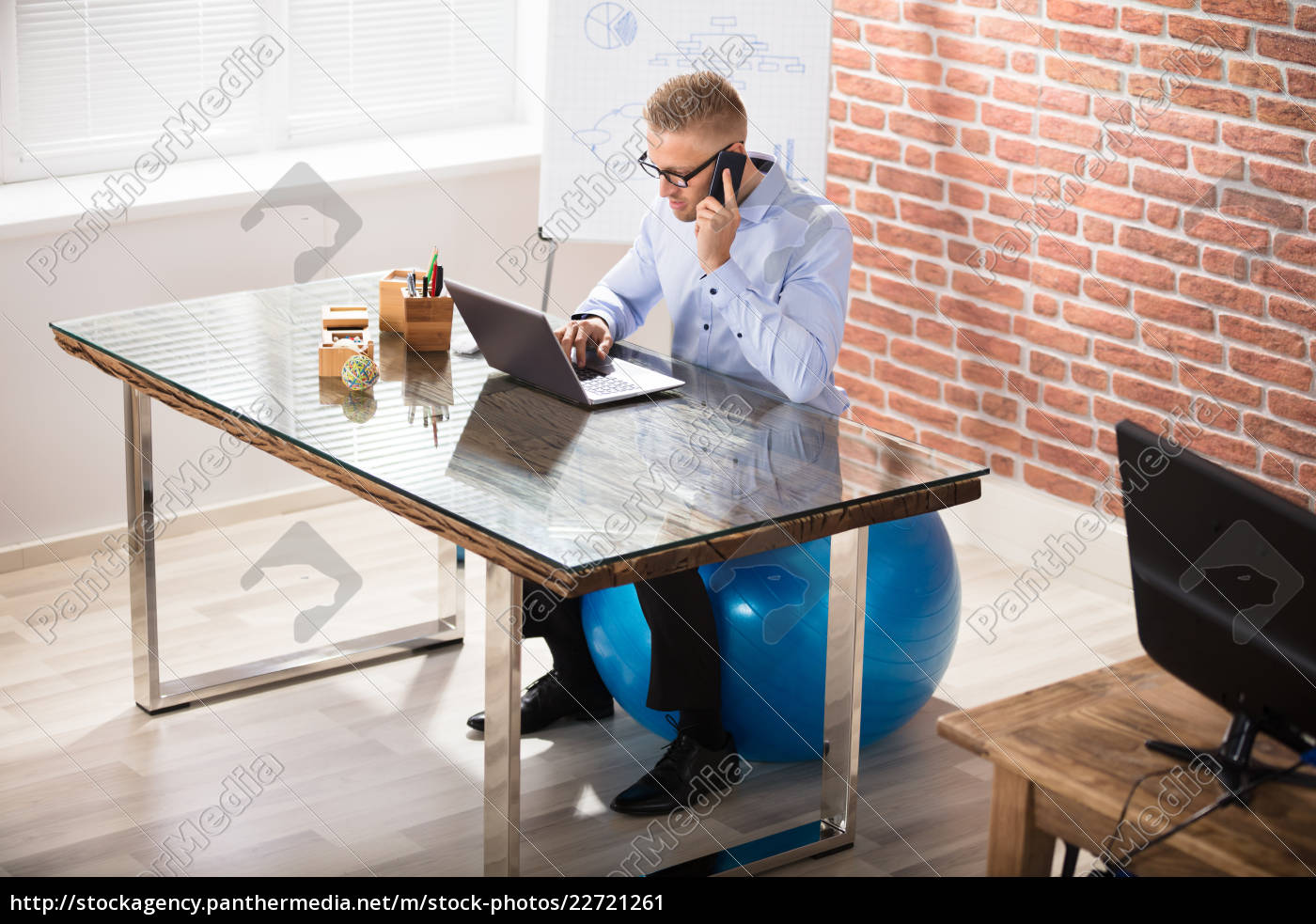 businessman, sitting, on, fitness, ball, working - 22721261