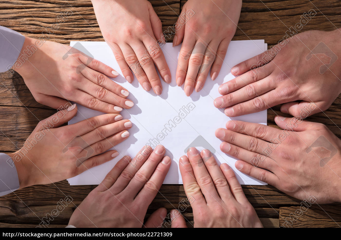 hands, touching, white, paper - 22721309
