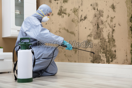 pest, control, worker, spraying, pesticide, on - 22722927