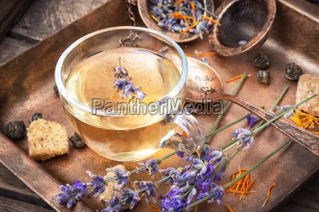 healing herbal tea with lavender