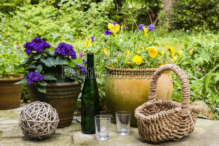 still life in the garden