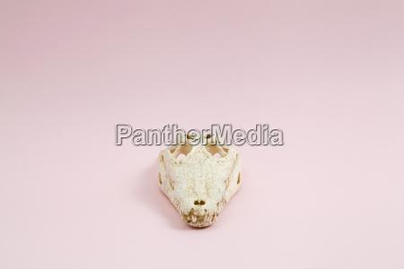 pink crocodile skull