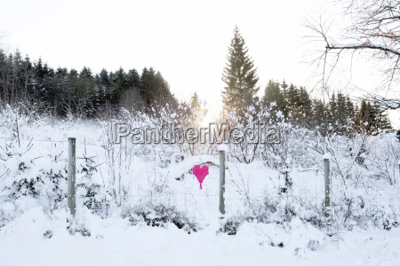 woven heart at fence in winter