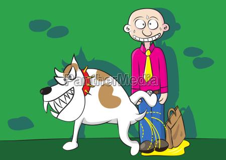 funny aggressive dog urinating marking territory