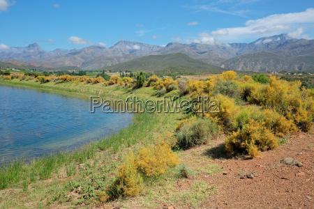 rural landscape south africa