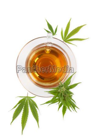 cannabis herbal tea