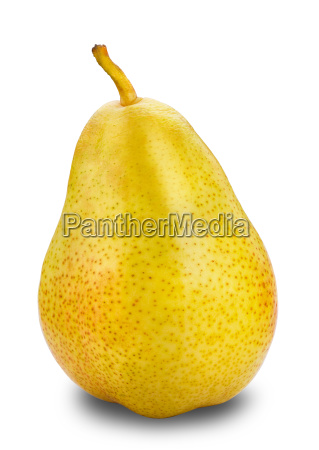yellow pear isolated way in path