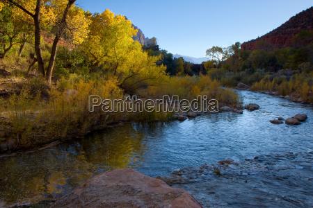 autumn sunlight on the virgin river