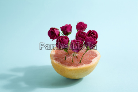 grapefruit and red roses