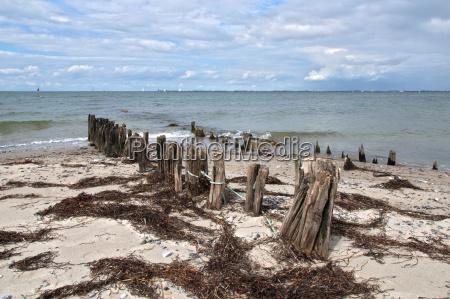 breakwaters on the baltic sea beach