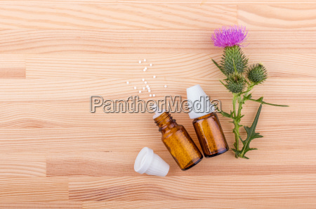 mary thistle homeopathic medicine and