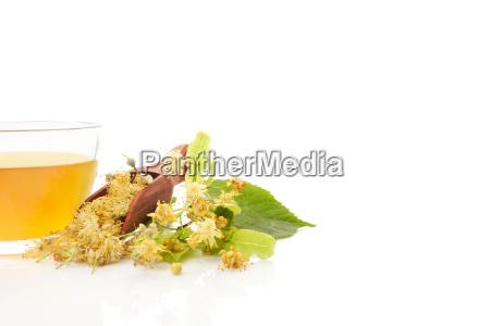 linden tea with linden flowers