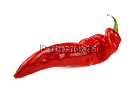 red paprika pepper close up isolated