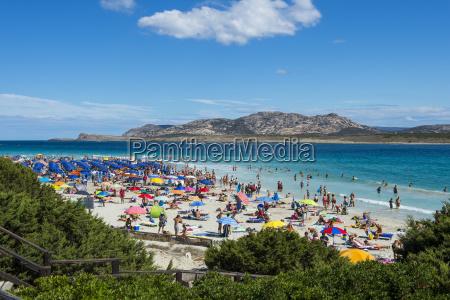 praia de pelosasardenhaitaliamediterraneoeuropa