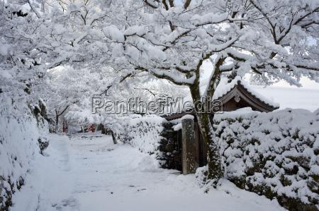 passeio viajar templo cor arvore jardim