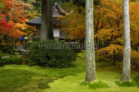cores de outono em sanzen in