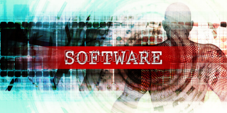 software sector