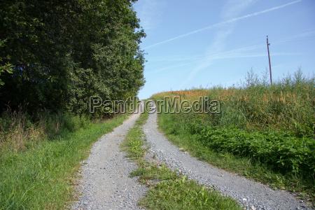 gravel road between meadows in summer