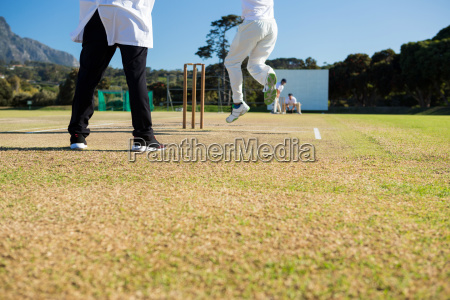 close up of team playing cricket