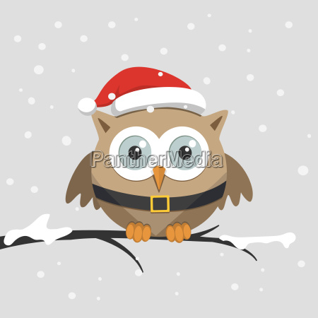 christmas male owl with santa claus