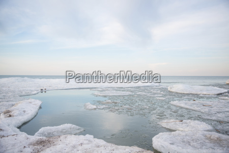 seascape with ice floats on a